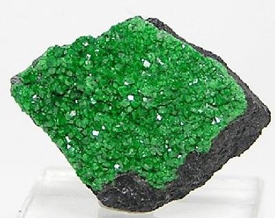 garnet green